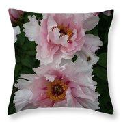 Wild Pink Peony  Throw Pillow