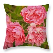 Pink Peonies Throw Pillow