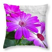 Pink Perciallis Ragwort Flower Art Prints Throw Pillow