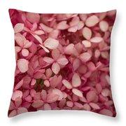 Pink Petal Throw Pillow