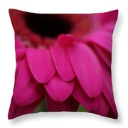 Pink Petals Throw Pillow