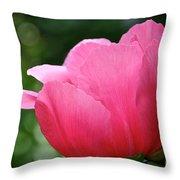 Pink Petals Green Diamonds Throw Pillow