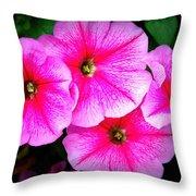 Pink Petunias Throw Pillow