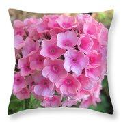 Pink Phlox 2 Throw Pillow