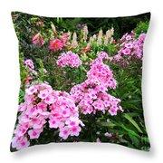 Pink Phlox Throw Pillow