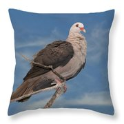 Pink Pigeon Throw Pillow