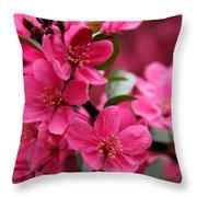 Pink Plum Blossoms Throw Pillow