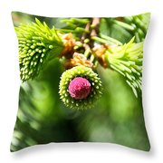 Pink Point Throw Pillow