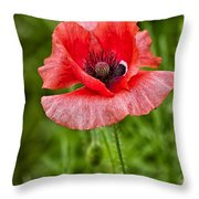 Pink Poppy Flower Among The Green Background Throw Pillow