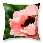 Pink Poppy Today Throw Pillow