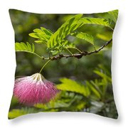 Pink Powderpuff Blossom Throw Pillow