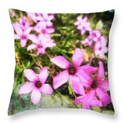 Pink Propellers  Throw Pillow