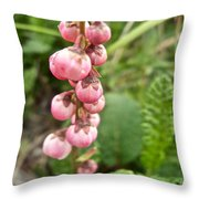 Pink Pyrola On Alpine Tundra Trail By Eielsen Visitor's Center In Denali Np-ak Throw Pillow