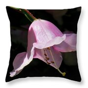 Pink Rhododendron Blossom Throw Pillow