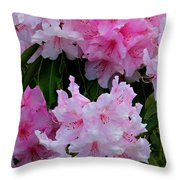 Pink Rhododendrons Throw Pillow