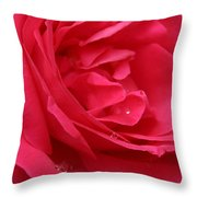 Pink Rose 03 Throw Pillow