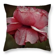 Pink Rose And Raindrops Throw Pillow by Patricia Strand