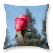 Pink Rose And Trees Throw Pillow
