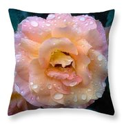 Pink Rose Bathed In Rain Throw Pillow