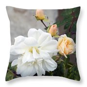 Pink Rose Buds At Carmel By The Sea Mission Throw Pillow