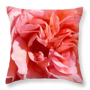 Pink Rose Closeup Throw Pillow