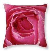 Pink Rose Dof Throw Pillow