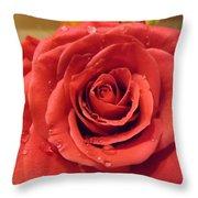 Pink Rose Drops Throw Pillow