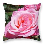 Pink Rose Flower Floral Art Prints Roses Throw Pillow