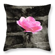 Pink Rose In Black And White Throw Pillow