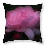 Pink Rose In Bloom Throw Pillow