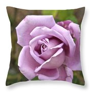 Pink Rose In Israel Throw Pillow