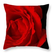 Pink Rose Isolated On Black Throw Pillow