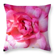 Rose With Touch Of Pink Throw Pillow