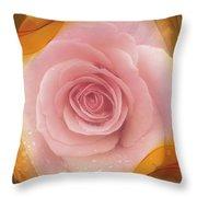 Pink Rose Romance  Throw Pillow