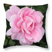 Pink Rose Square Throw Pillow
