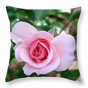 Pink Rose - Square Print Throw Pillow