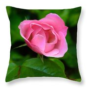 Pink Rose Volunteer Throw Pillow