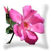 Pink Rose With Bud Throw Pillow