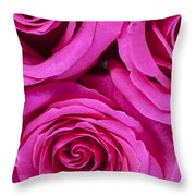 Pink Roses 2 Throw Pillow