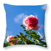 Pink Roses - Featured 3 Throw Pillow