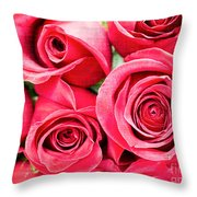 Pink Roses Flowers  Throw Pillow