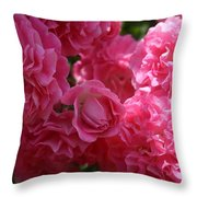 Pink Roses In Sunlight Throw Pillow