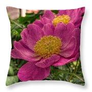Pink Row Throw Pillow