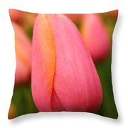 Pink Silk Throw Pillow