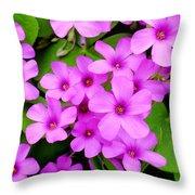 Pink Sorrel Throw Pillow
