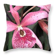 Pink Spotted Cattleya Orchids Throw Pillow