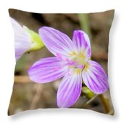 Pink Spring Beauty Throw Pillow