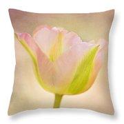 Pink Spring Dreams Throw Pillow
