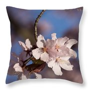 Pink Spring - Sunlit Blossoms And Blue Sky - Vertical Throw Pillow