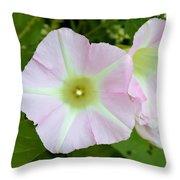 Pink Star 8706 Throw Pillow